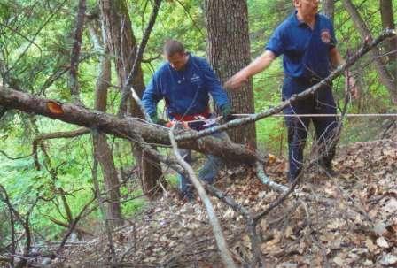 men in the woods