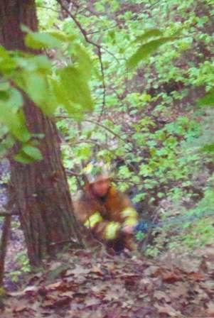 firefighter in the woods